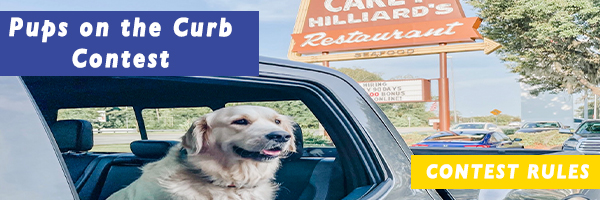 Pups On The Curb Contest Rules